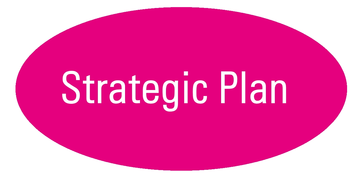 Stategic Plan
